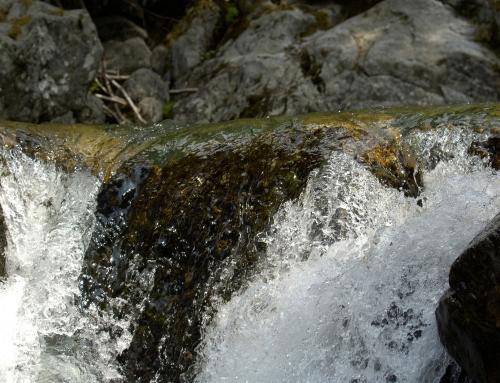 Une cascade, Parc du Mercantour